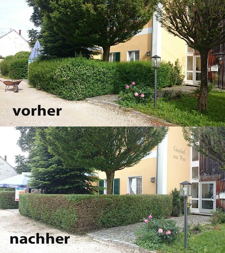 Heckenschnitt Eurasburg 2016 Vorher Nachher Fxw Gartenpflege